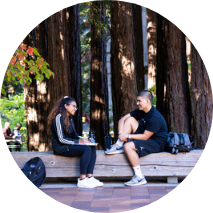 Students on a bench, redwood trees in background